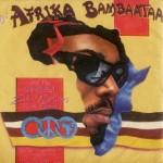 AFRIKA BAM FLAG a